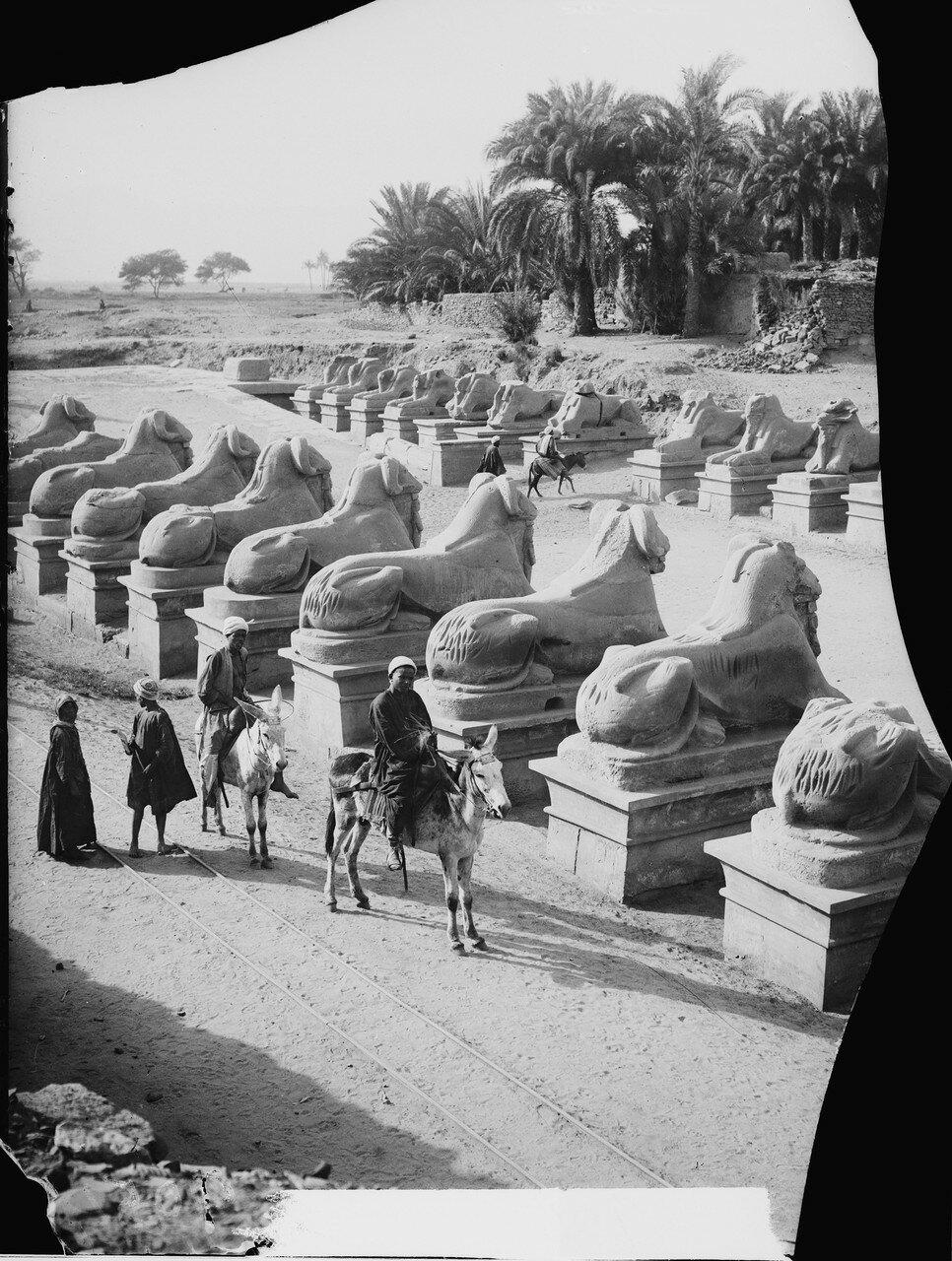 Карнак. Общий вид храма Хатхор. Ряды сфинксов перед первым пилоном