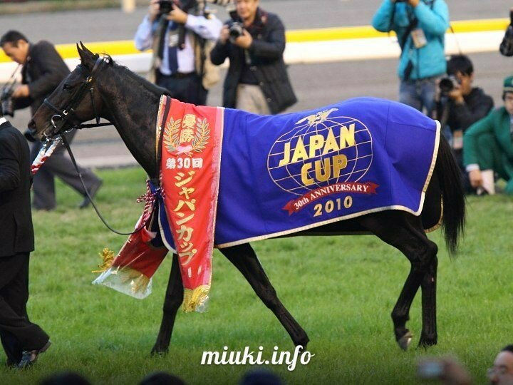 Конные скачки в Японии