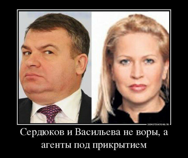 Сердюков и Васильева не воры, а агенты под прикрытием