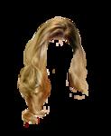 hair37.png