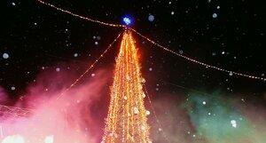 Зажглись огни на главной городской ёлке в Омске