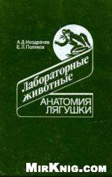 Книга Анатомия лягушки