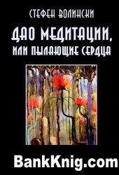 Книга Дао медитации, или Пылающие сердца pdf  1,65Мб