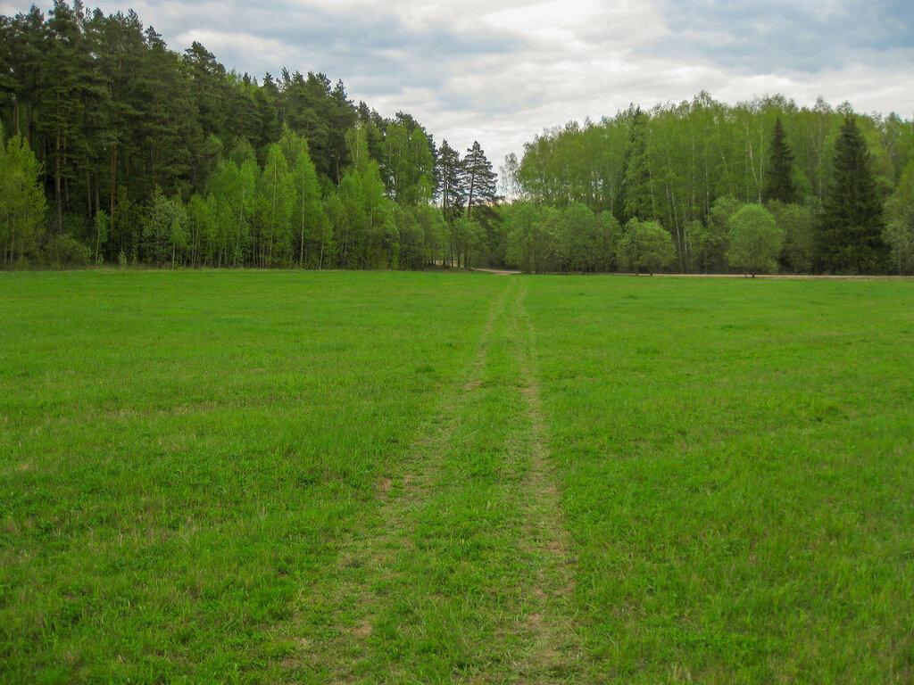 Поле около Рождественно-Суворово