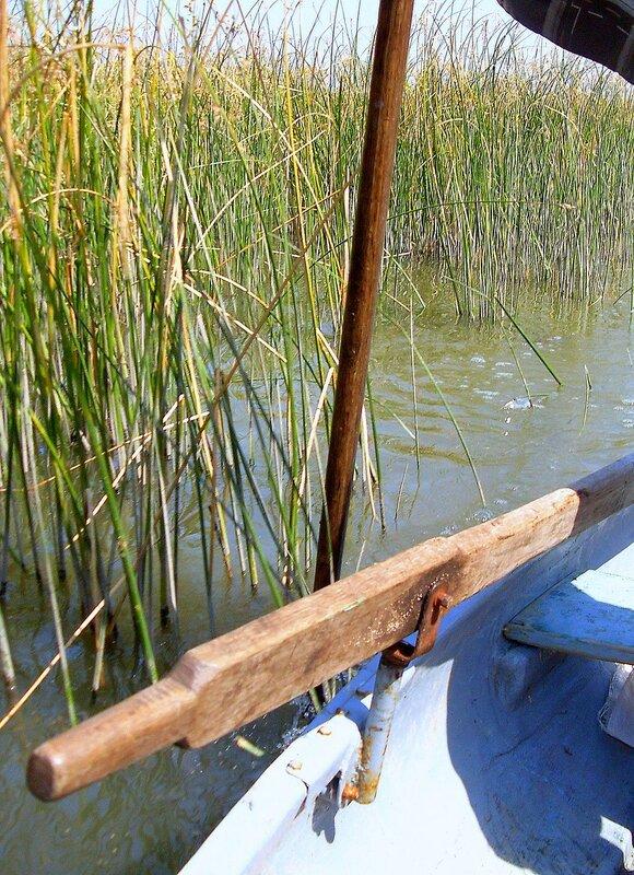 В походе лодочном ... SDC14299.JPG