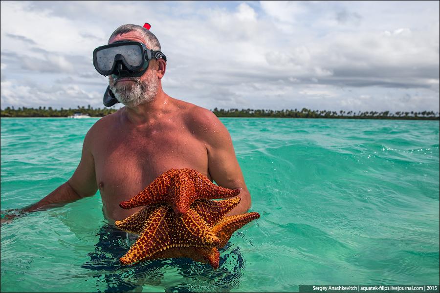 Пляж с морскими звездами / Saona island