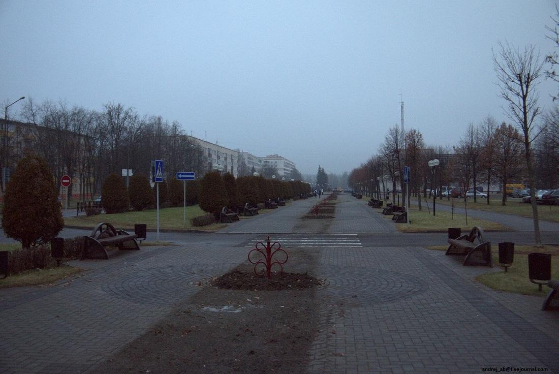 Аллея Новожилова в Новополоцке.