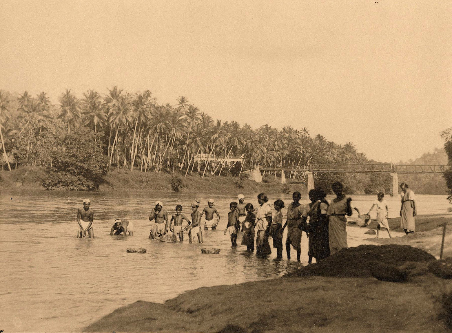 Цейлон. Купание на Махавели-Ганга