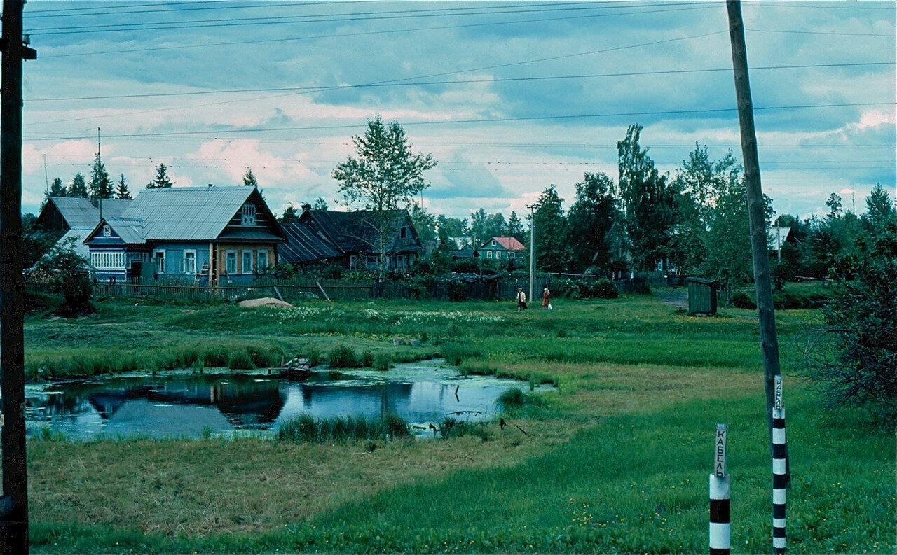 28. Деревня между Ленинградом и Новгородом