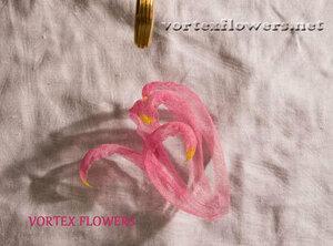 Мастер-класс. Хризантема из ткани «Ягодка» от Vortex  0_fbf8a_4b940cce_M