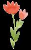 SWIEJKO_flowers_3e.png