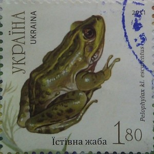2011 N1140-1144 (b93) блок Фауна Земноводные Жабы устивна жаба 1.80