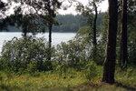 Природа 2006