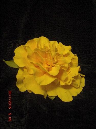 Цветы из фоамирана 0_fcd8a_818d2adc_L