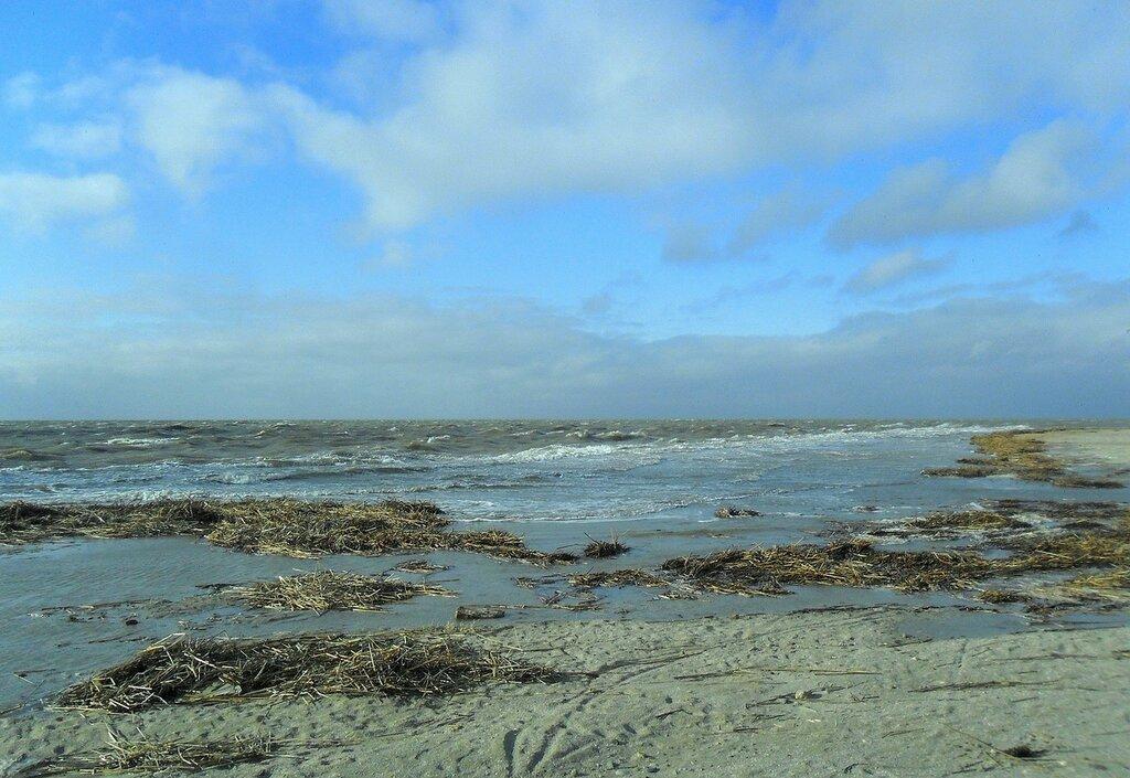 Весна, ветер, море ... SAM_5727.JPG