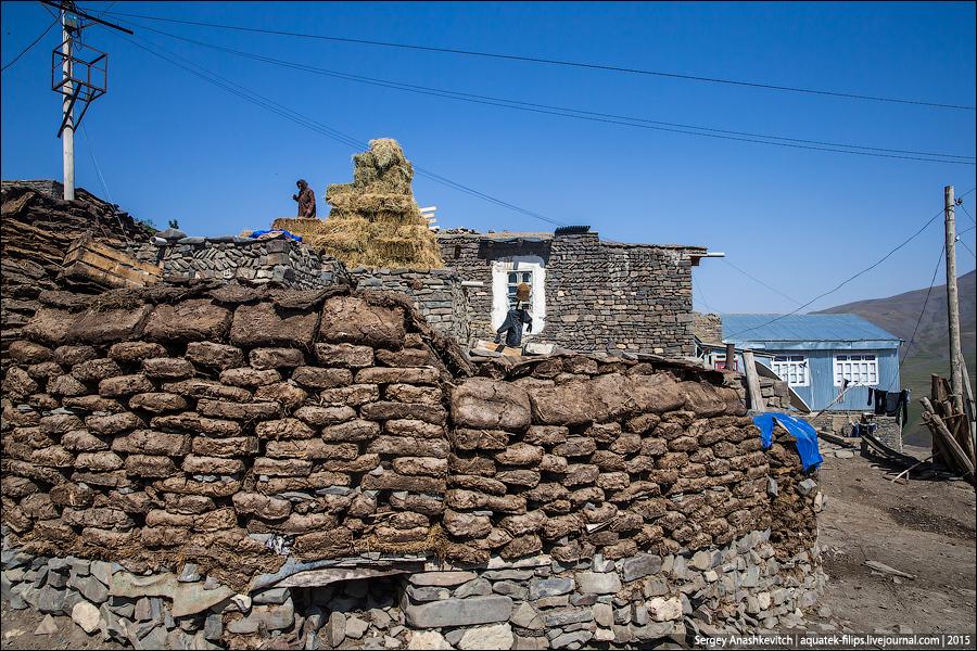 Дом из говна и палок