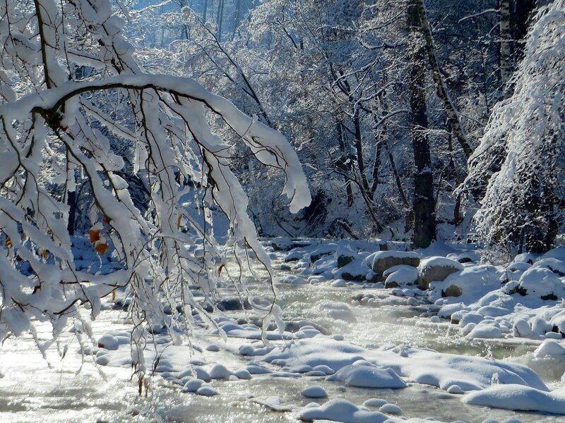 Во власти зимы