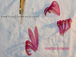 Мастер-класс. Хризантема из ткани «Ягодка» от Vortex  0_fbf81_e611b9a_M