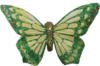 butterfly03_bc_harmony_green.png