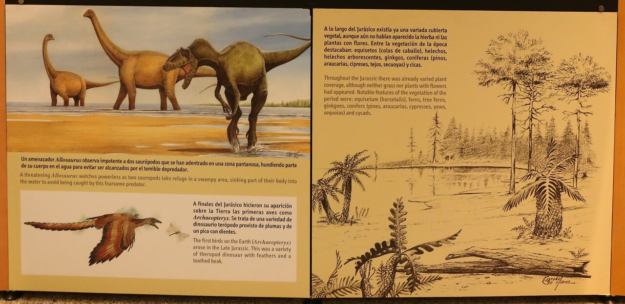 The house of science in logroño. Dinosaur Museum