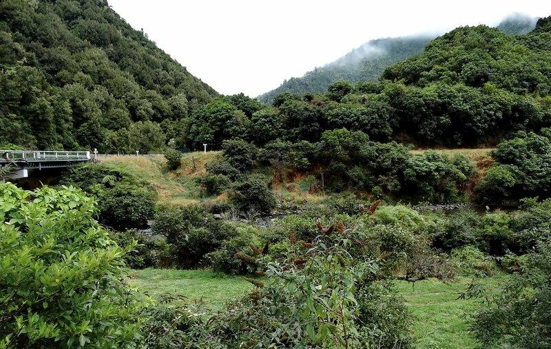Природа в горах Новой Зеландии