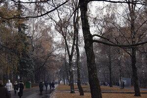 Осенняя природа_6. Осень в парке.