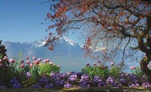 Весна, весна, как воздух чист