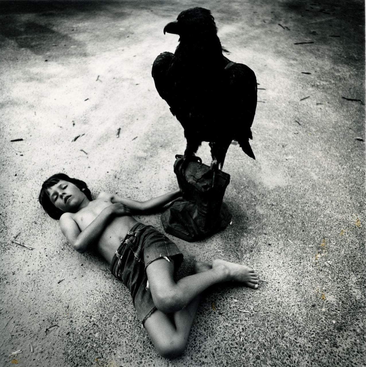 1970. Мальчик и ворон