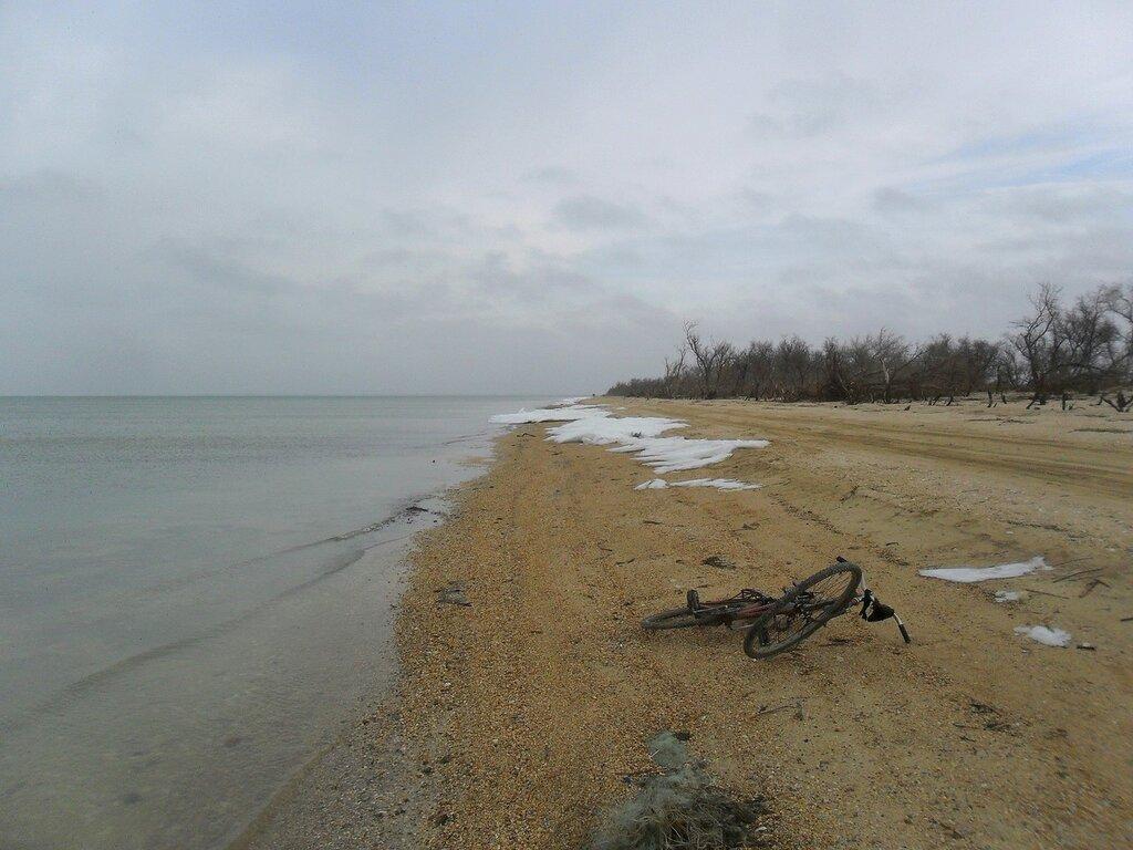 На берегу... SAM_5596.JPG