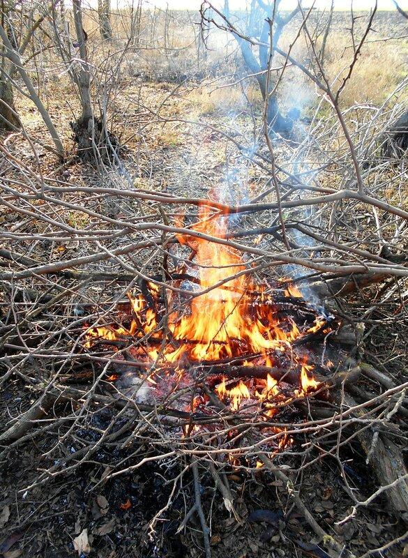 Огонь, в походе ... DSCN2418.JPG