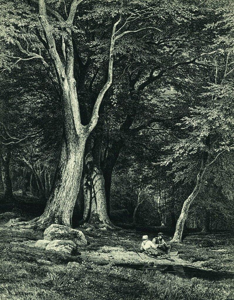 Лес. 1869 47х36,5.jpg