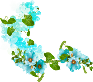цветы рисованные
