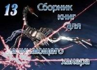Аудиокнига Сборник книг хакера№13 pdf 4,06Мб