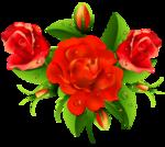цветы-(141).png