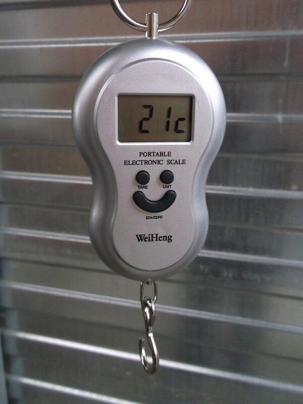 CninaBuye: Электронные весы – безмен