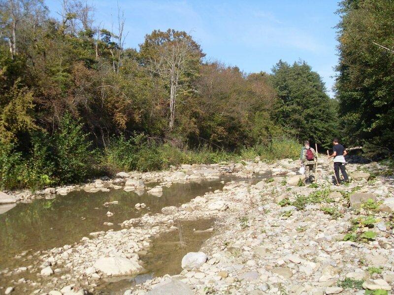 11 октября 2008, под Горячим Ключом, у реки (60).JPG