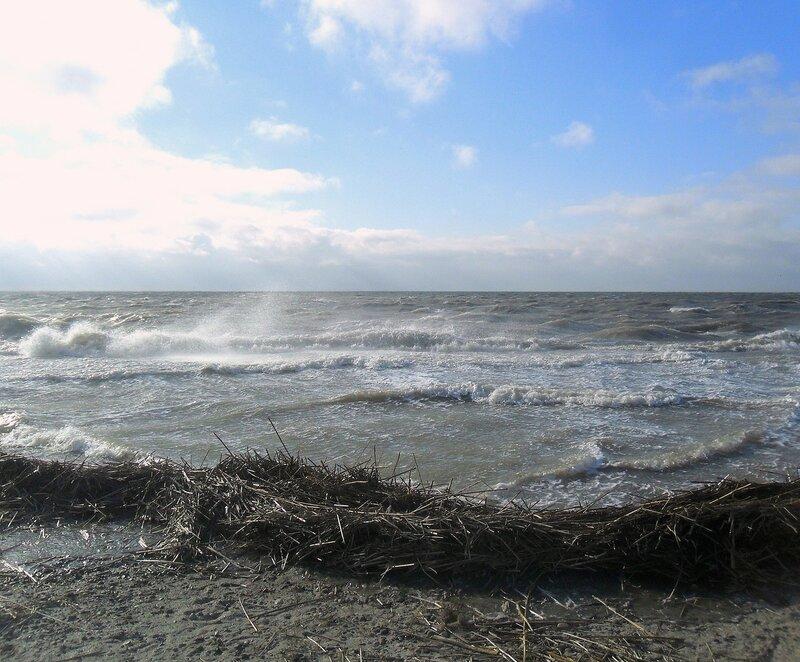 Прибой, ветер, волнение ... SAM_5736.JPG