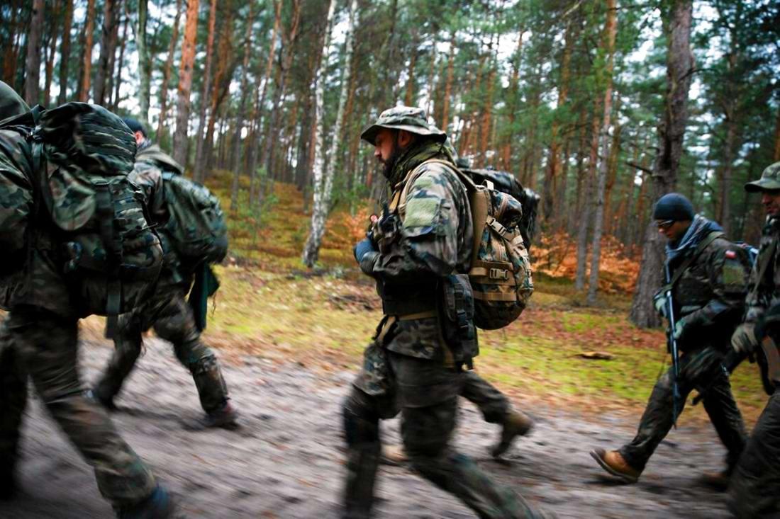 Военизация по-польски: Назло Европе и в угоду Америке (8)