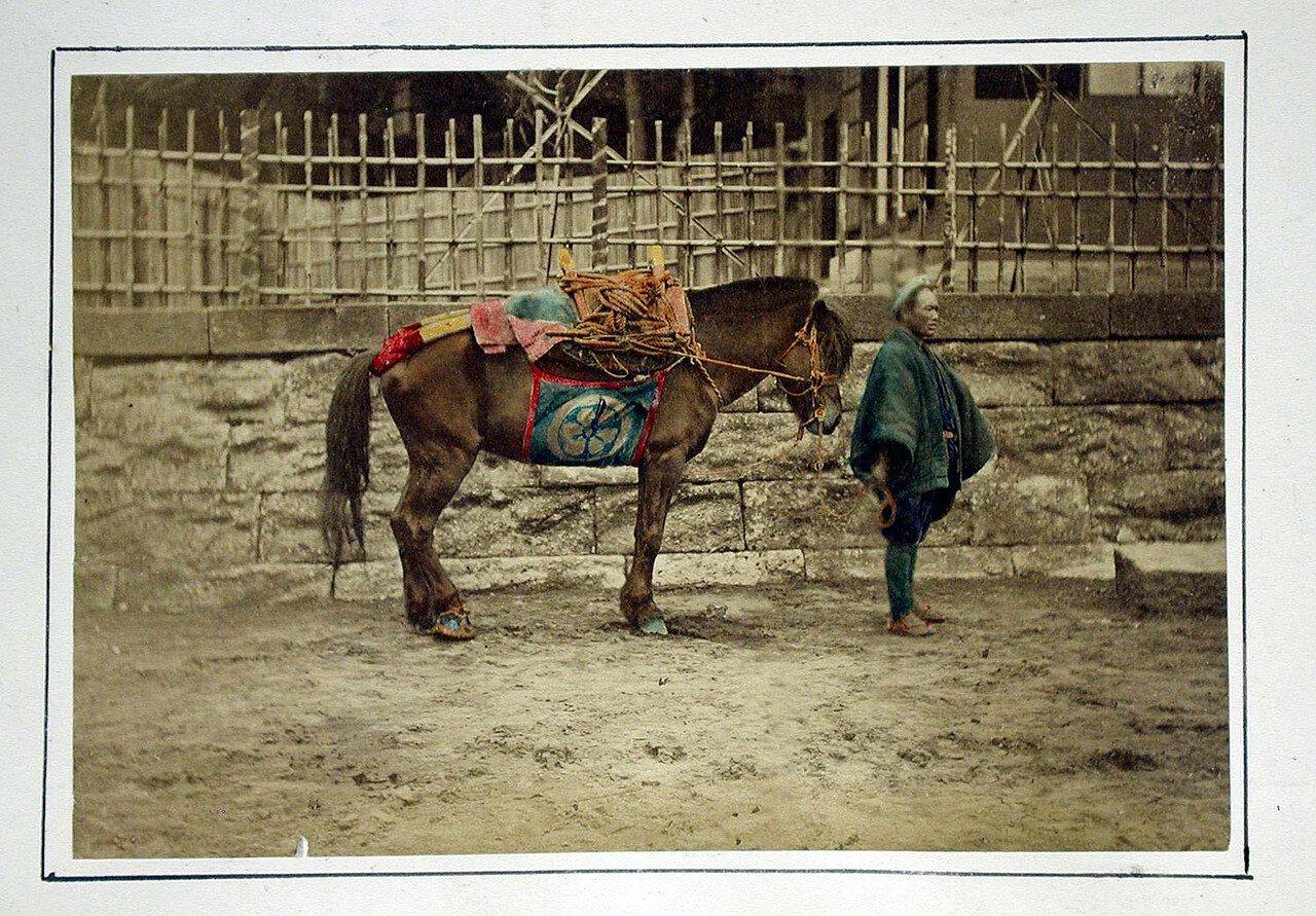 Лошадь с хозяином. 1875