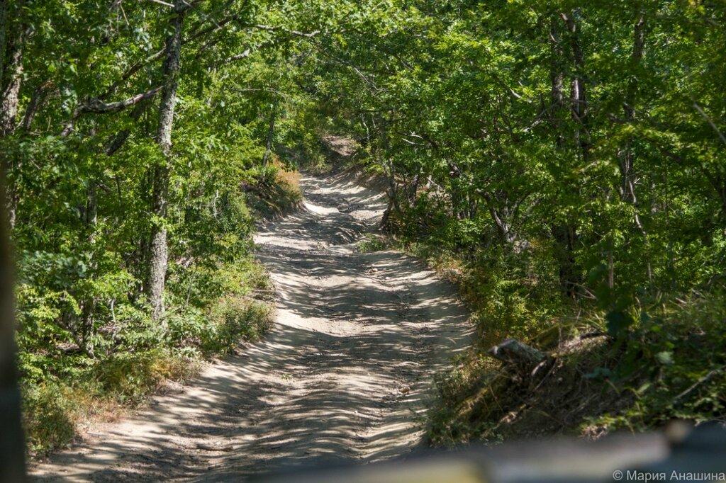 Дорога к дольмену