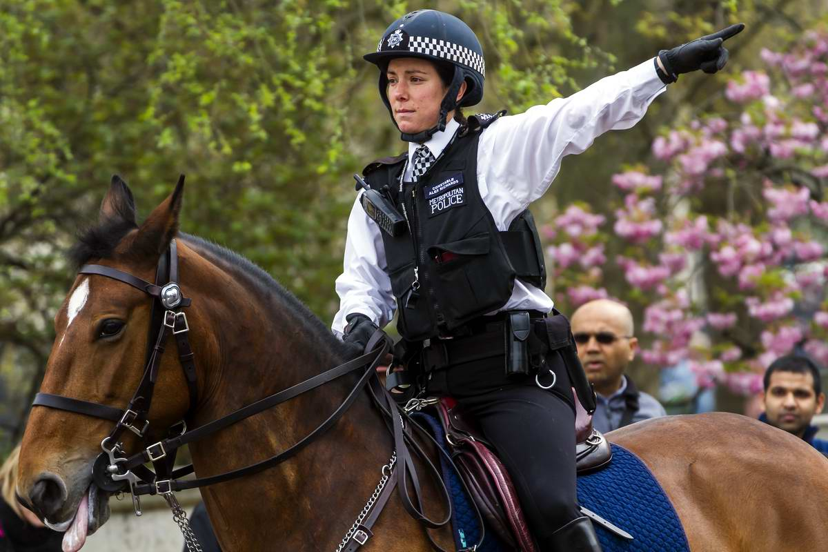 Чопорные наездницы: Девушки из британской конной полиции (1)