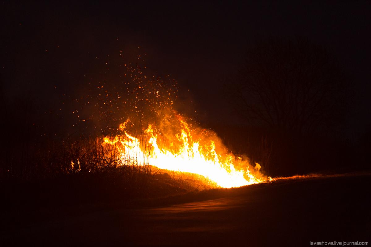 В Калининградской области горит трава