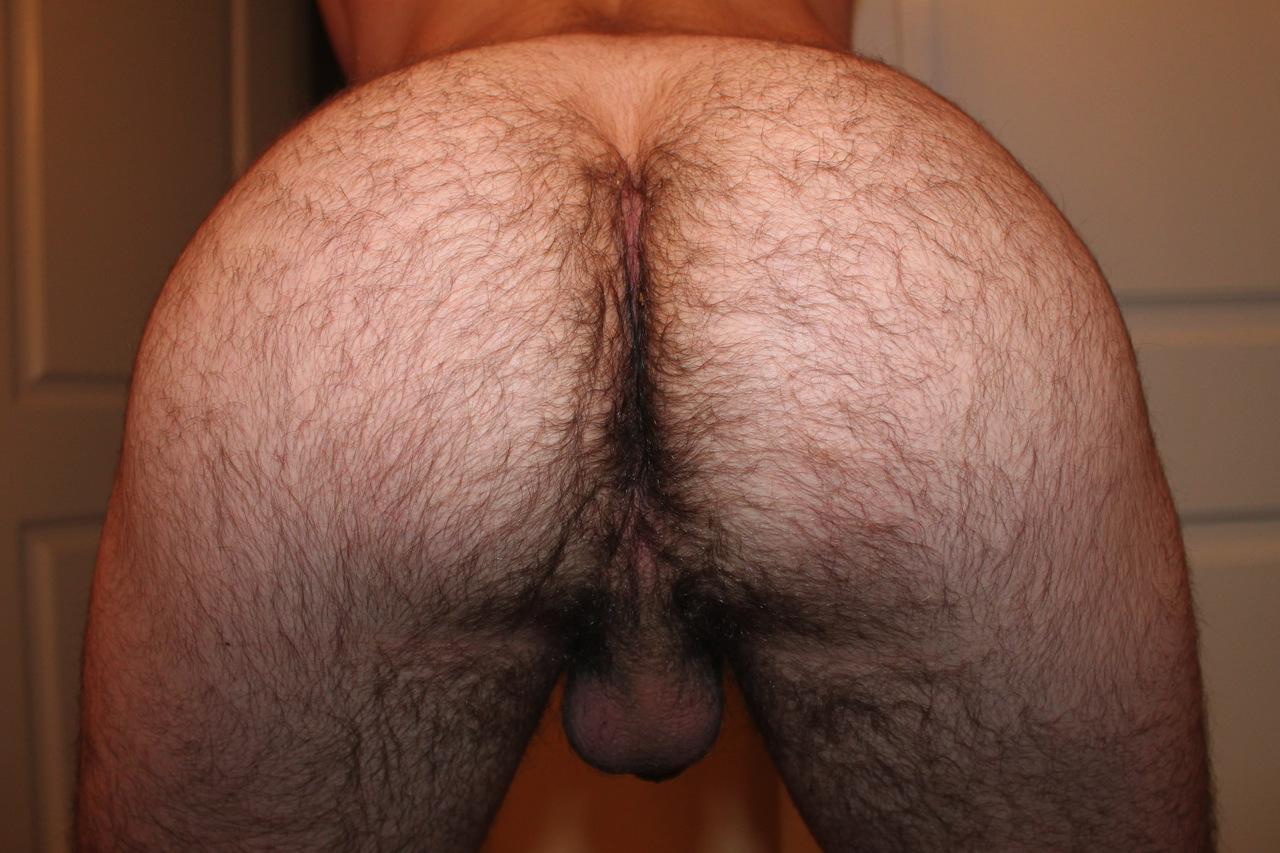 мужская волосатая жопа фото