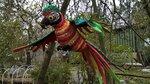 Попугай Ара Красно-зеленый.