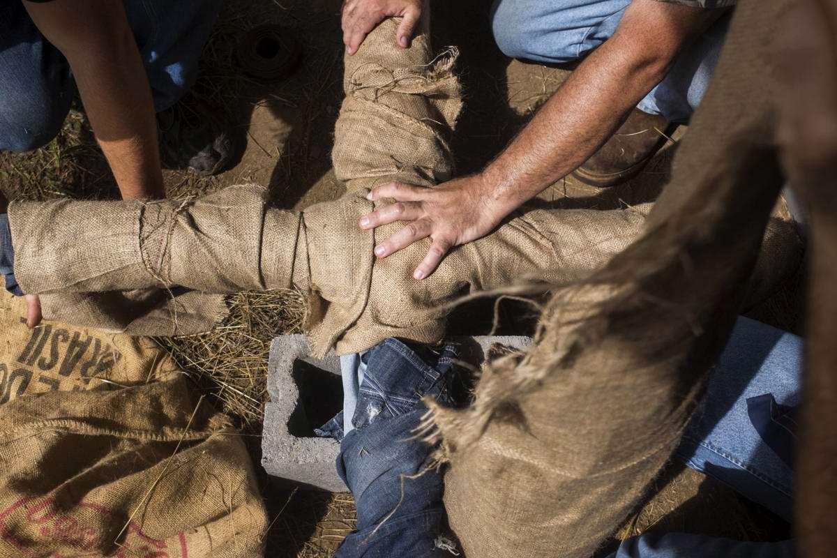 Торжество толерантности: Американский Ку-Клукс-Клан в новой подборке снимков фотографа Johnny Milano (9)