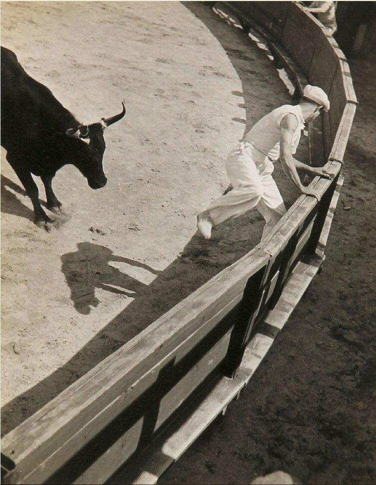 1936.  Гонки с быками в Провансе, Сент-Мари-де-ла-Мер. Часть 7