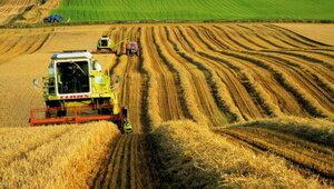 Молдавским фермерам дадут доступ к кредиту Польши