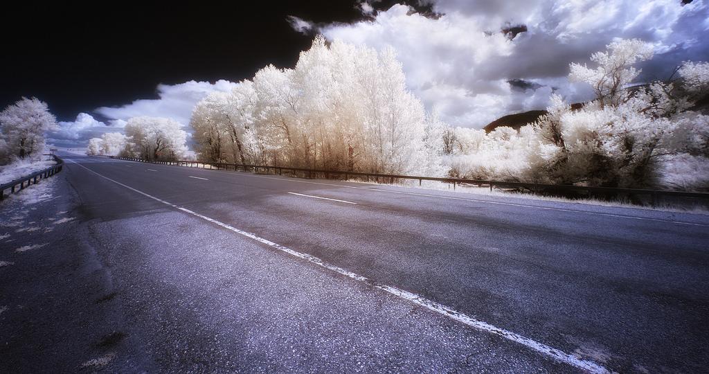 Winterized, Greg Westfall80.jpg