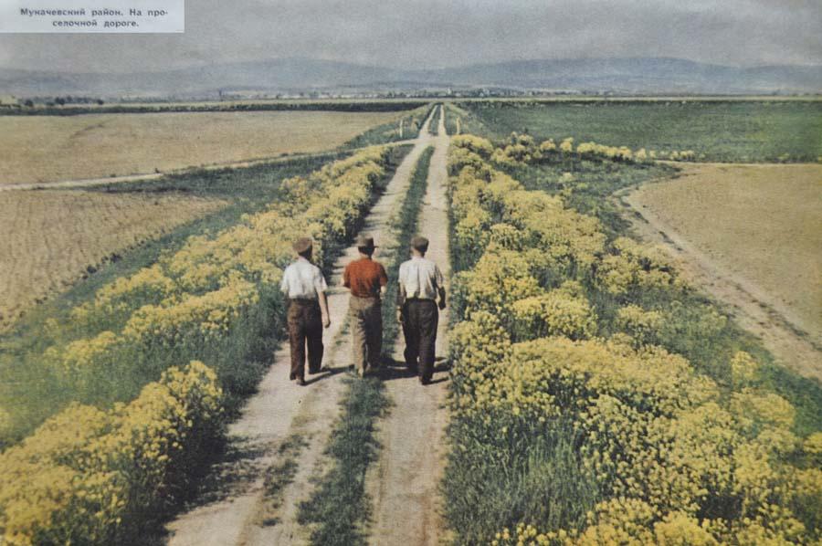 1959 в украинском колхозе2.jpg