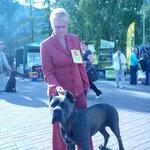 Выставка собак-2015